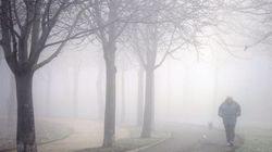 12 imágenes de España bajo la niebla