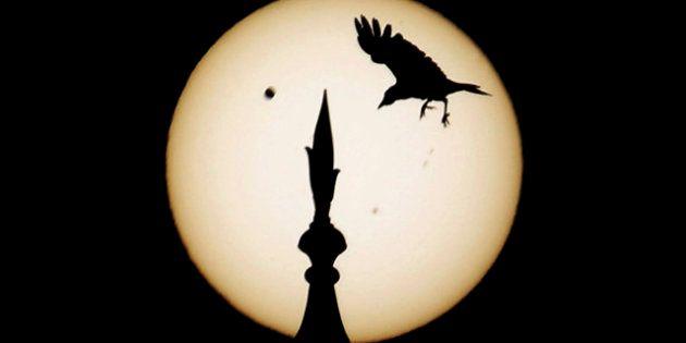 El próximo martes 13 de noviembre habrá un eclipse total de sol por primera vez en dos