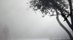 Conducir con niebla y otros consejos