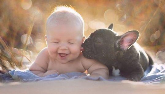 Un bebé y un bulldog, amigos