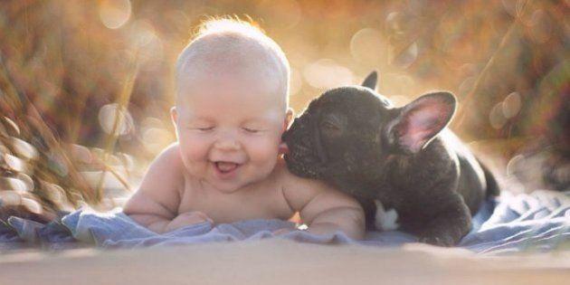 Un bebé y un bulldog francés, amigos inseparables