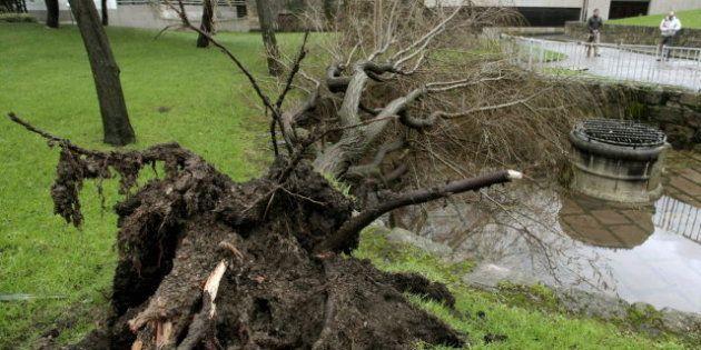 Al menos tres muertos por el temporal de lluvia y viento en la