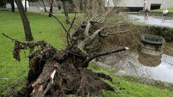 Al menos tres muertos por el temporal de lluvia y