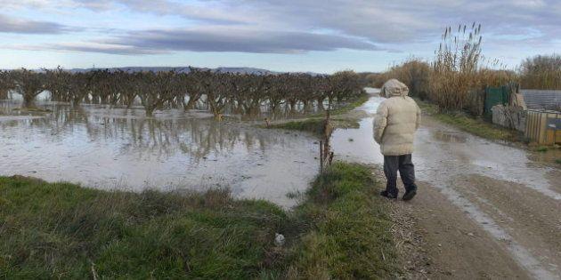 La subida del caudal del Ebro pone en peligro las zonas de