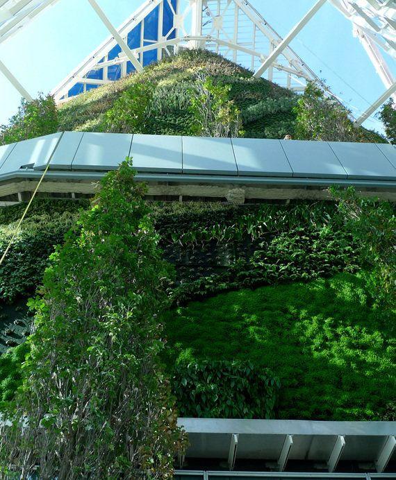 Jardines verticales: decoración vegetal desde otro ángulo de