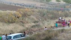 Ecologistas en Acción denuncia la muerte a tiros de una vaca en