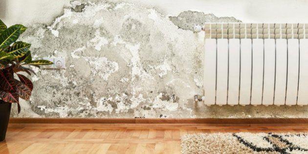 Resultado de imagen para casa enmohecida humedad