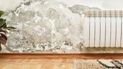 Sótanos sin humedades: ocho respuestas concretas a un problema