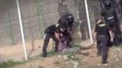 El Gobierno dice que el inmigrante devuelto aparentemente inconsciente le echó