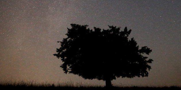 Perseidas 2015: ¿de verdad estás preparado para ver la lluvia de