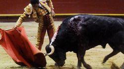 El Congreso pone en marcha la declaración de los toros como bien