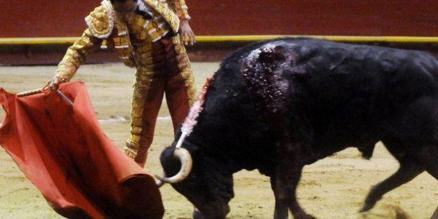 El Congreso pone en marcha la declaración de los toros como bien cultural con el apoyo del