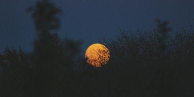 ¿Realmente se duerme peor las noches de luna