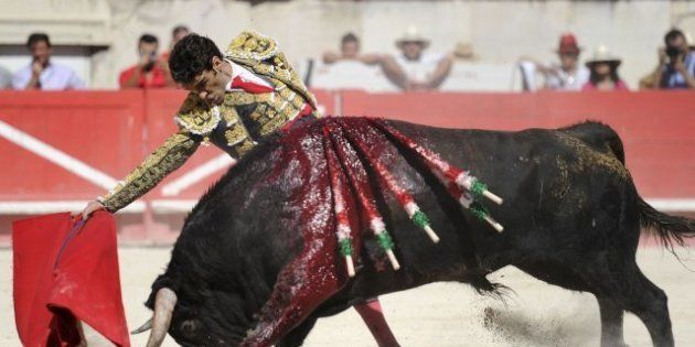 Carlos Zúñiga, empresario taurino: