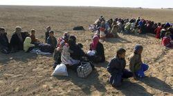 Estado Islámico despliega un ejército de niños con cinturones de explosivos en