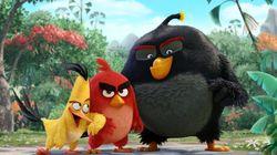 El tráiler de 'Angry Birds' ya está