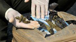 Detenido con marihuana tras votar contra su