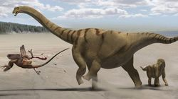 Roban un dinosaurio de tres metros de un