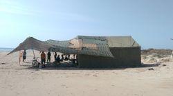 El Ejército protege un nido de tortuga hallado en