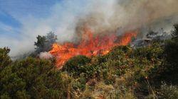 Las autoridades afirman que el incendio de Jerte ha sido