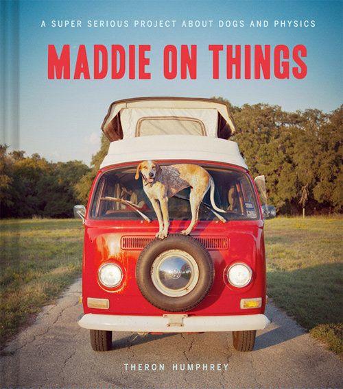Maddie, Momo, Bodhi y otras celebridades perrunas de