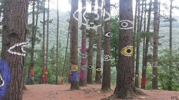 La sabiduría del bosque: religados por el