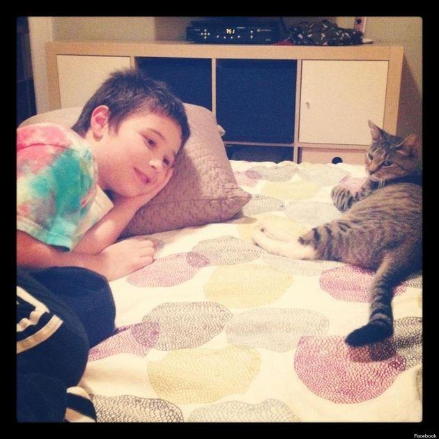 Nunca prometas a tus hijos que si consiguen 1.000 likes en Facebook les dejarás tener gato