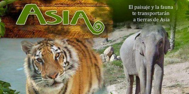 Muere una cuidadora al ser atacada por un tigre en el parque Terra Natura
