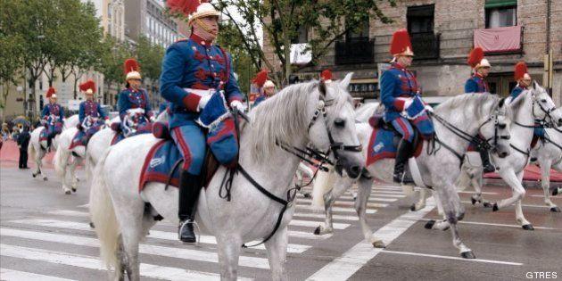 Defensa gastará 200.000 euros en viruta de pino para la cama de los caballos de la Guardia
