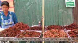 La FAO insta a comer insectos para combatir el