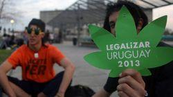 Uruguay venderá a 1 dolar el gramo de marihuana