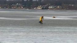 El agónico rescate de este perro que cayó a un lago helado