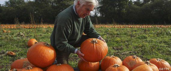 Orígenes de Halloween: calabazas, caramelos, truco o trato... ¿sabes de dónde vienen las