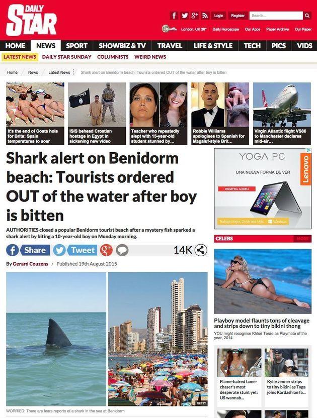 El tiburón que siembra el pánico en Benidorm ni es tiburón ni siembra el