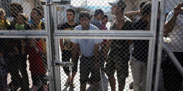 Un eurodiputado húngaro propone colocar cabezas de cerdo en las fronteras para 'espantar' a los