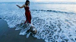 Una isla muy felina, una boda coreana masiva y otras 15 fotos que deja el