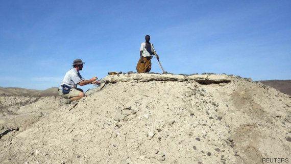 Hallado el fósil más antiguo del género 'Homo' con 2,8 millones de años de