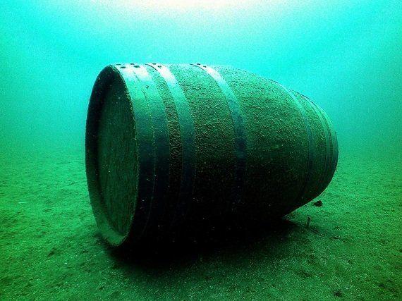 Plancton marino, vino y un