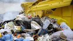 La solución al problema de las basuras en Jerez ya se