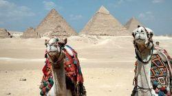Nueve curiosidades por las que te apetecerá ir a Egipto