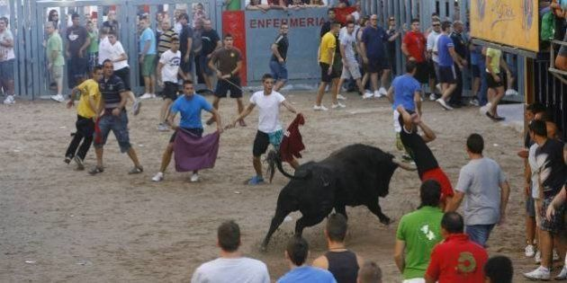 Muere un hombre en los festejos de toros en la calle de Borriol