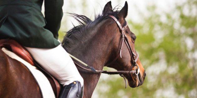 Jesús Jiménez Mirón: Iba a caballo hasta Alemania para encontrar trabajo... y lo encontró en