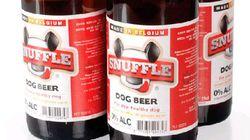 Cerveza para perros (y otras frikadas para tu