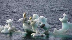 Año 2100: fecha límite de la ONU para eliminar los gases