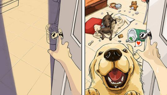 La vida antes y después de tener perro, en nueve