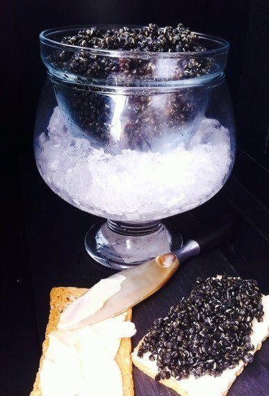 Falso caviar de quinoa o por qué algunos políticos tal vez deberían masturbarse