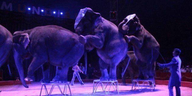 Cataluña prohibirá el circo con