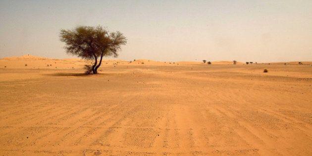 Hallados los cadáveres de 87 inmigrantes muertos de sed en el desierto de