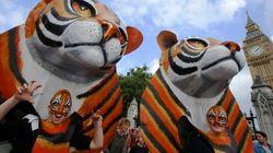 Marchas en ciudades de todo el mundo contra el cambio climático