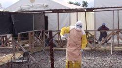 El fin del ébola se baila y se